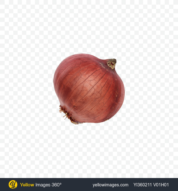 Download Red Onion Bulb Transparent PNG on YELLOW Images