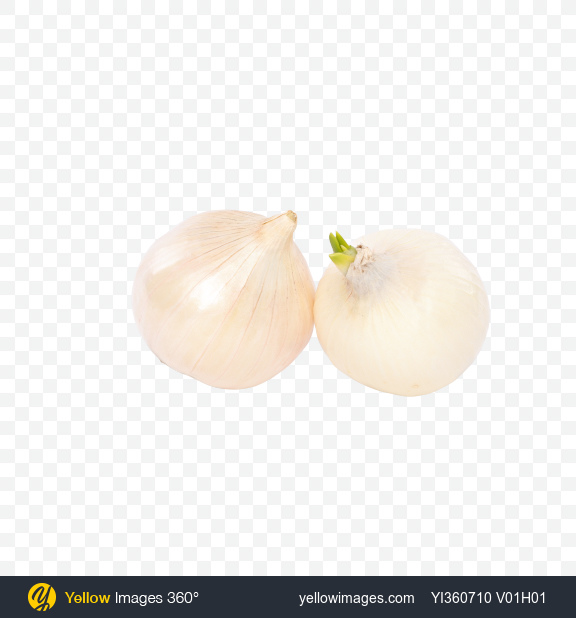 Download Two White Onion Bulbs Transparent PNG on YELLOW Images