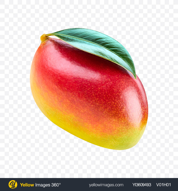 Download Mango Transparent PNG on YELLOW Images