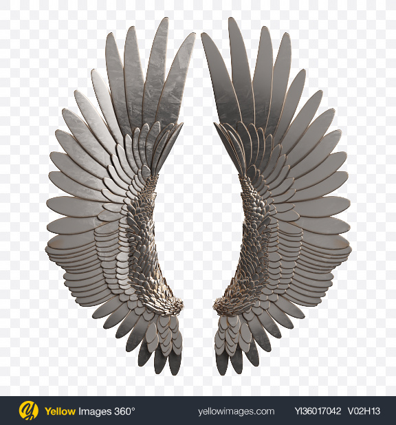 Download Silver Wings Transparent PNG on YELLOW Images
