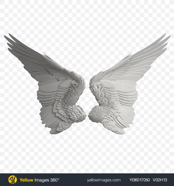 Download Pair of Wings Transparent PNG on YELLOW Images
