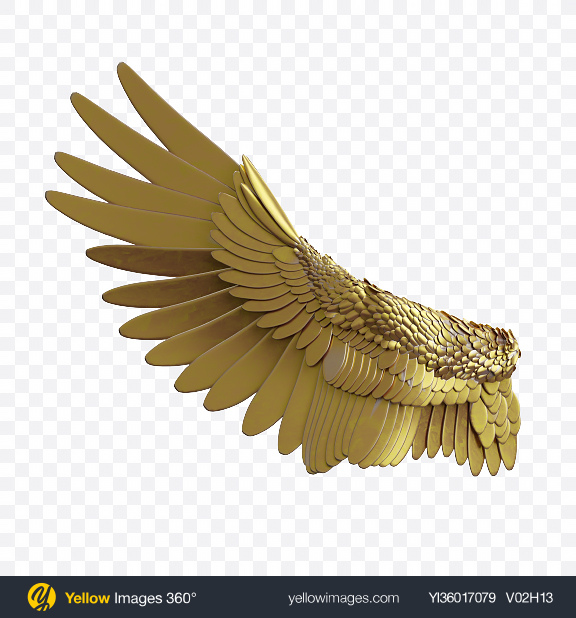 Download Golden Wing Transparent PNG on YELLOW Images