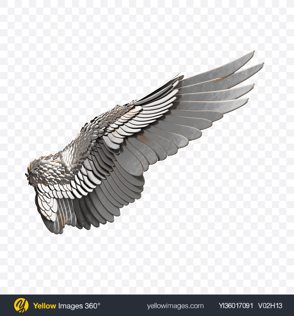 Download Silver Wing Transparent PNG on YELLOW Images